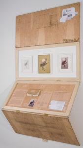 Museums as Viewing Machines: Work by Jeffrey Abt @ UMW Ridderhof Martin Gallery | Fredericksburg | Virginia | United States
